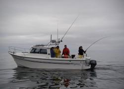 boat1-min