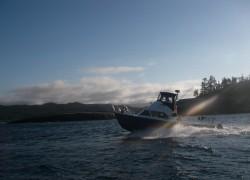 boat4-min